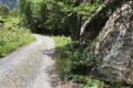 Muschel 05.03 T NEU: Pütschaidras Susch. Grosser Fels am rechten Wegrand